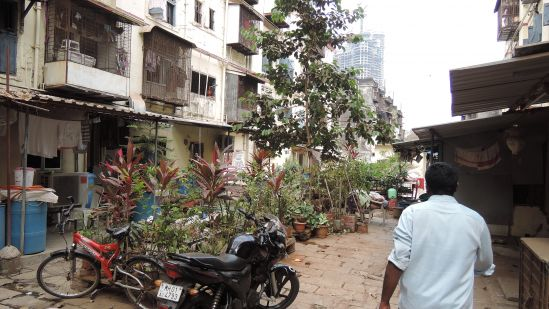 Tenants of BDD Chawls have appropiated the in-between space in all kinds of ways. Here is a garden that can be removed when the space needs to be used for other functions.
